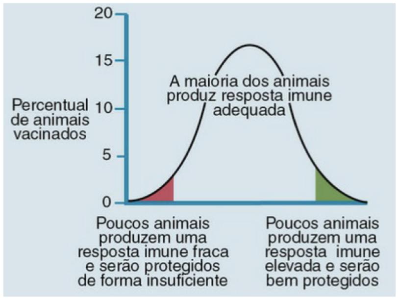 Gráfico de projeção