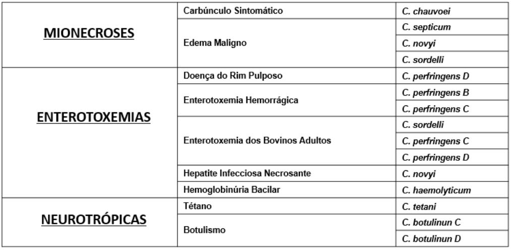 Resumo das principaos Clostridioses e seus agentes etiológicos