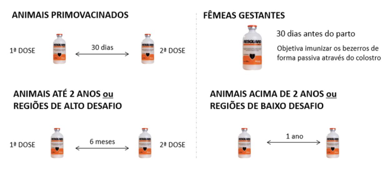 Esquema de vacinações