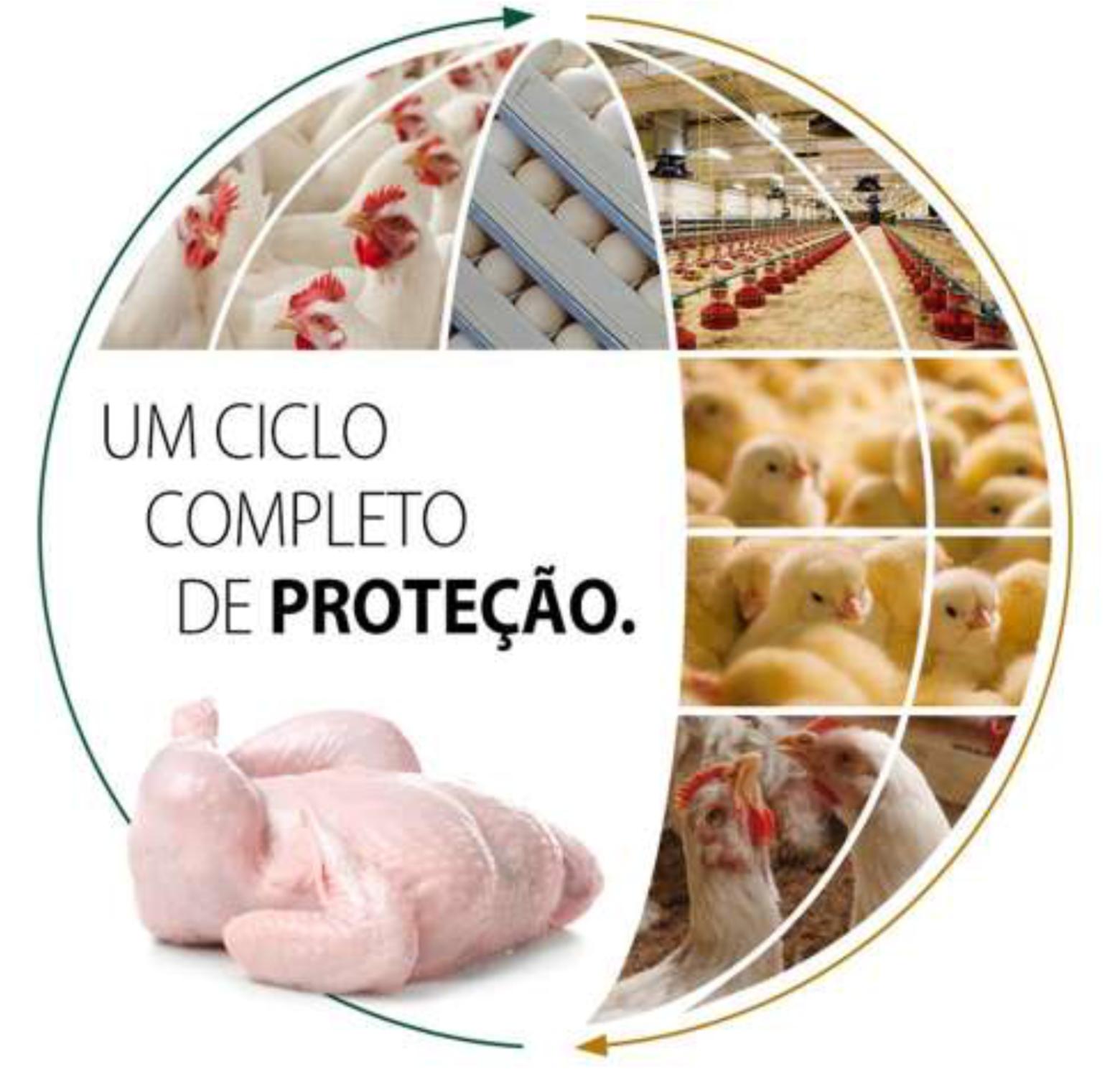 Vaxxon IBD imc: Um ciclo completo de Proteção